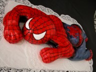 1361527268_TORT_SPIDERMAN.JPG